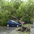 Absicherung bei Sturmschäden